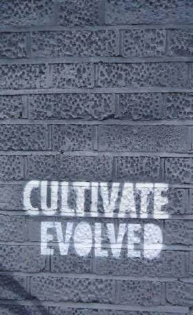 evolvedwall4