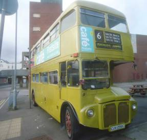A golden bus, outside the golden banana
